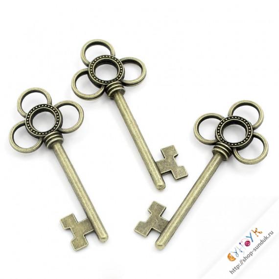 Ключ [K02666]